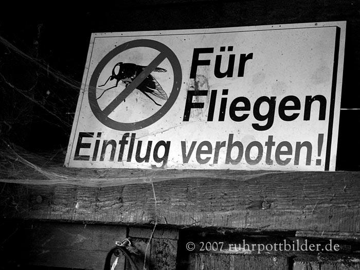 Warnung für Fliegen in einem Gelsenkirchener Schuppen